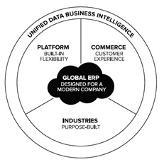 NetSuite Global ERP