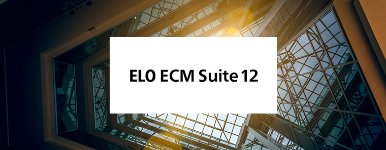 ELO ECM-Tour 2019 in Neuss