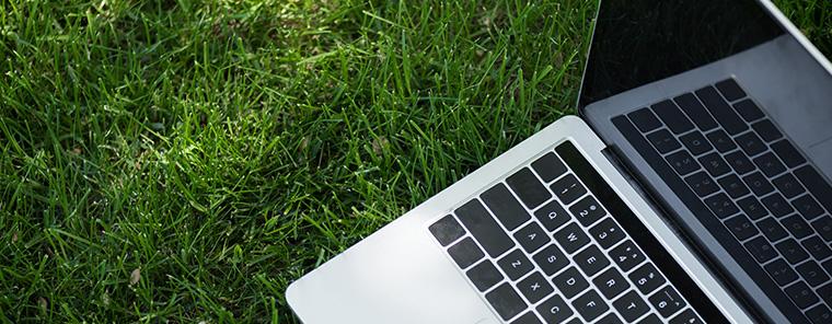 Green IT – Digitalisierung und Nachhaltigkeit