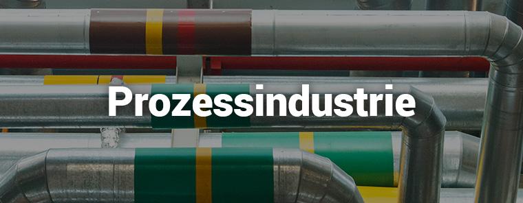 Prozessindustrie