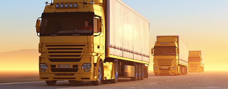 Eine ERP-Software für Transportunternehmen